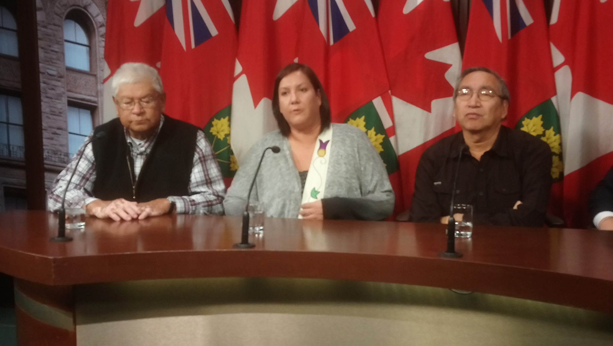 Grassy Narrows leaders call for action on mercury treatment centre