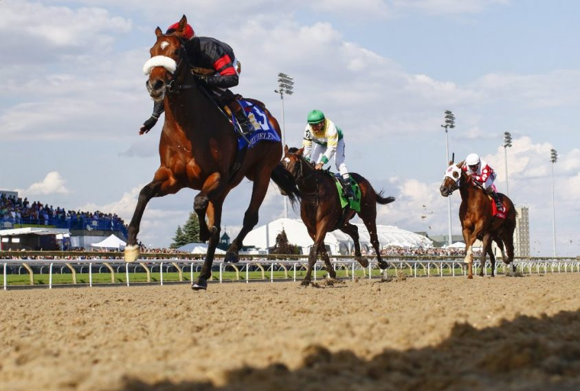 NDP MPP demands a level playing field for horse-racing in Niagara