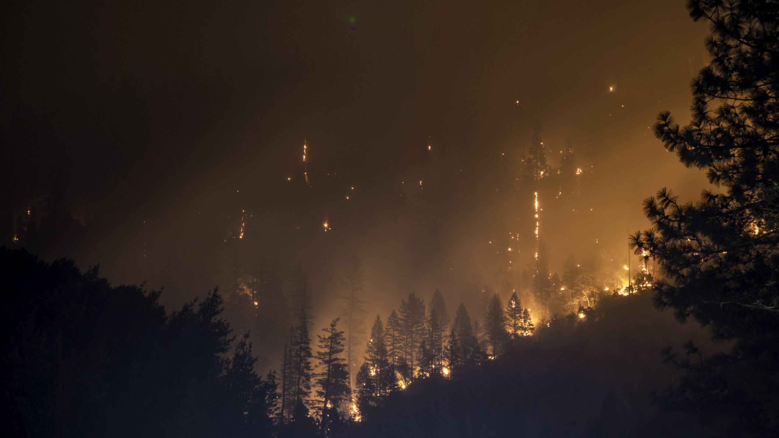 Provincial government declines First Nations' request for state of emergency due to wildfires